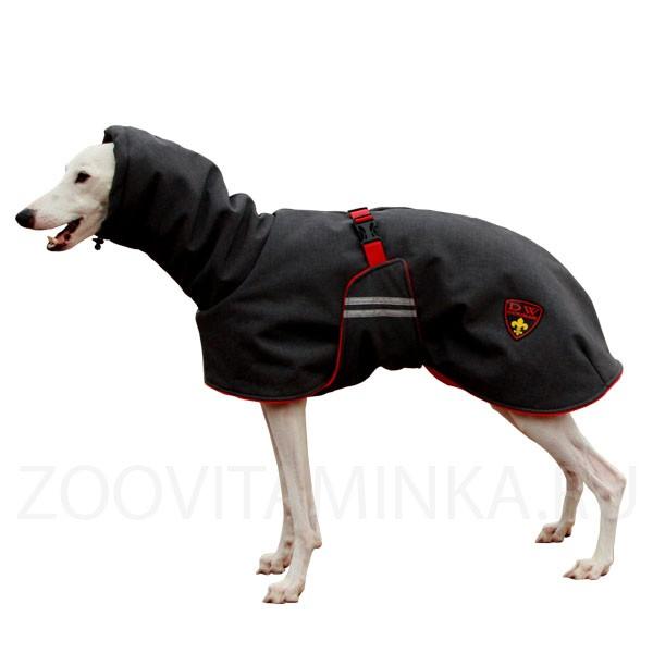 Одежда для собак мелких пород купить недорого